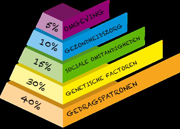 Piramide factoren persoonlijke gezondheid